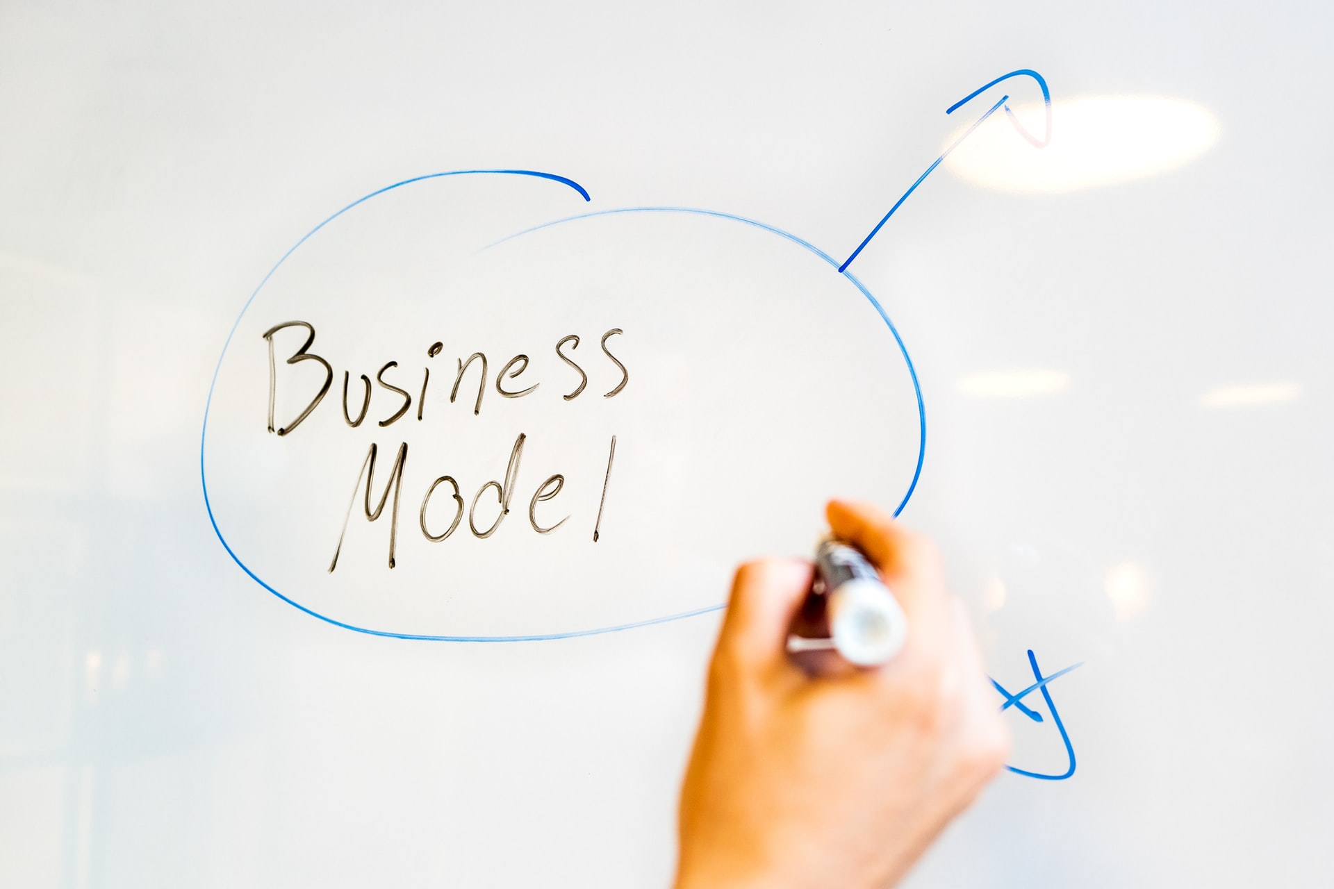 The Business Model & the Business Plan